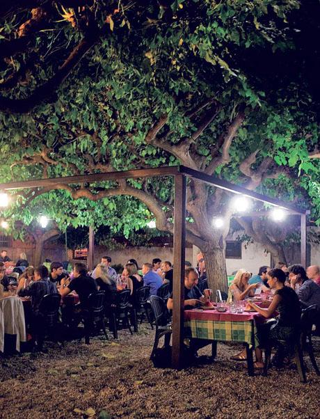 hostaria-calice-doro-roma-giardino